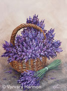 Lavender, original painting acrylic on canvas by Varvara Harmon