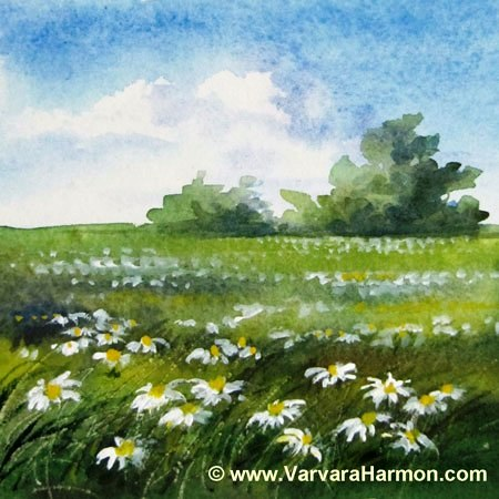 Daisies Field, Miniature watercolor