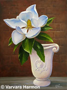 Magnolia, oil painting on canvas 16x12