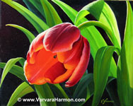 "Red Tulip, oil painting 8""x10"""