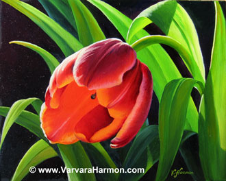 Red Tulip, Oil painting