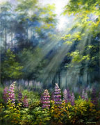 Lupines in Sunrays, oil painting