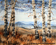 Birch Trees at Crawford Notch, Original watercolor painting by Varvara Harmon