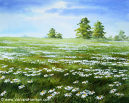Daisies Field, Original watercolor painting by Varvara Harmon