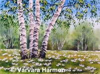 Daisies Season, Original watercolor painting by Varvara Harmon