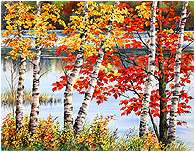 Autumn Birch Trees, Original Seascape watercolor painting by Varvara Harmon
