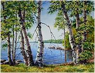 Birch Trees on Long Lake, Original Seascape watercolor painting by Varvara Harmon