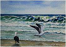 Dancing Seagulls, Original Seascape Watercolor painting by Varvara Harmon